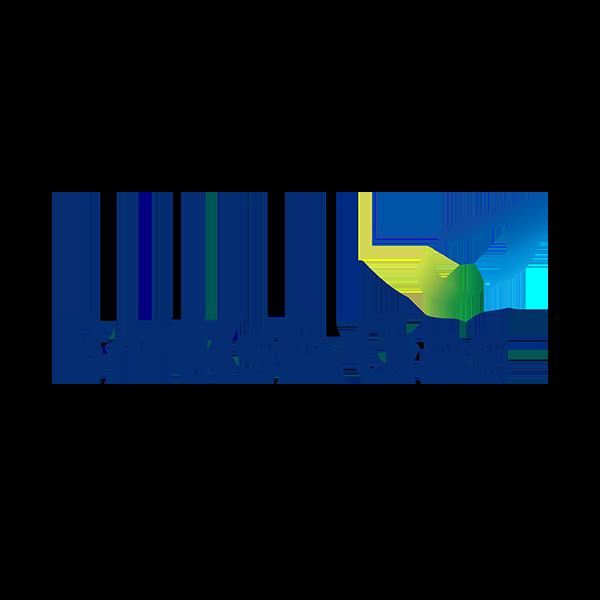 Logo-British Gas