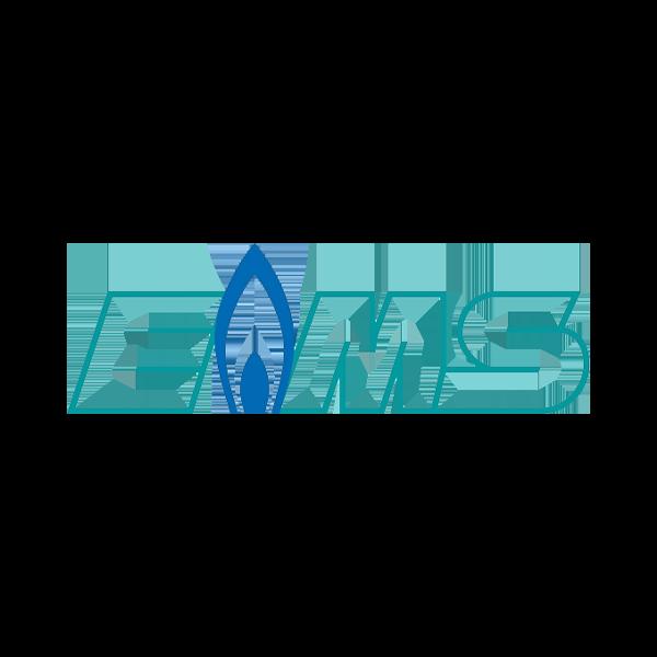 Logo-EMS