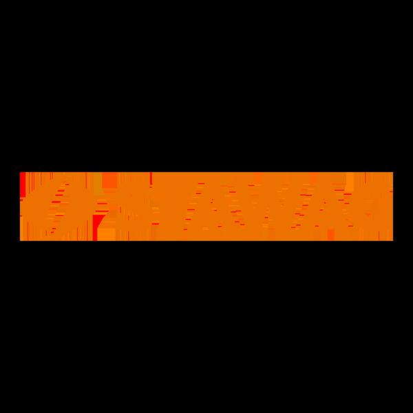 Logo-STAWAG