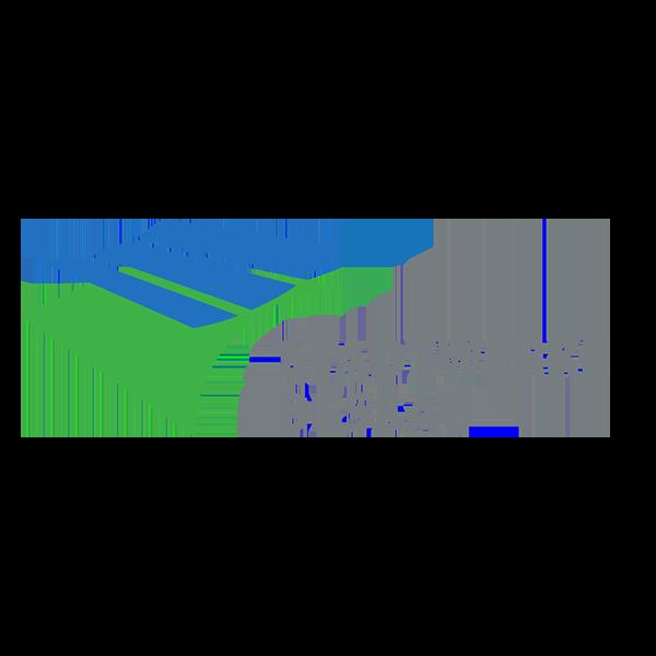 Logo-SW Dessau