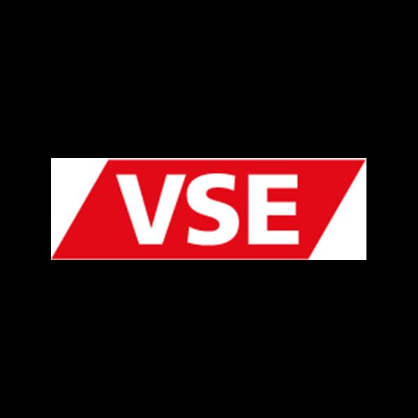 Logo-VSE