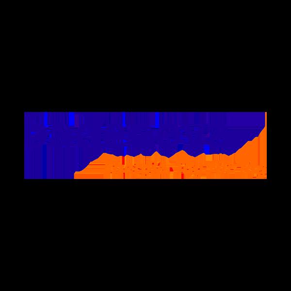 Logo-badenova