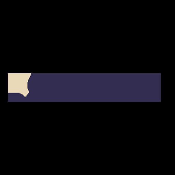 Logo-evu zählwerk