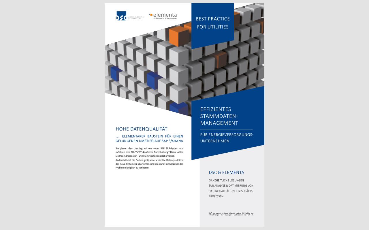 Stammdatenmanagement – DSC & elementa